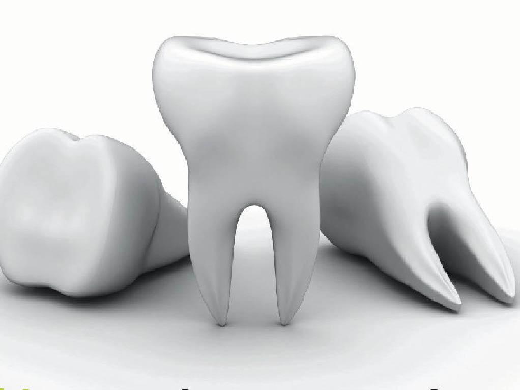 Технологии выращивания зубов 91